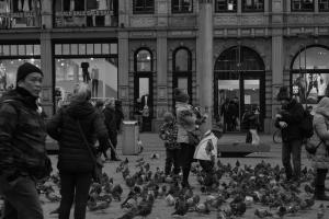 Amsterdam B&W 2/5